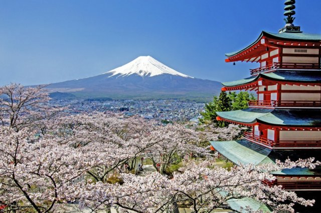 Arakurayama Sengen Park【Temporarily CLOSED】